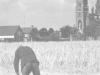 oogsten-op-de-biest-jaren-zestig